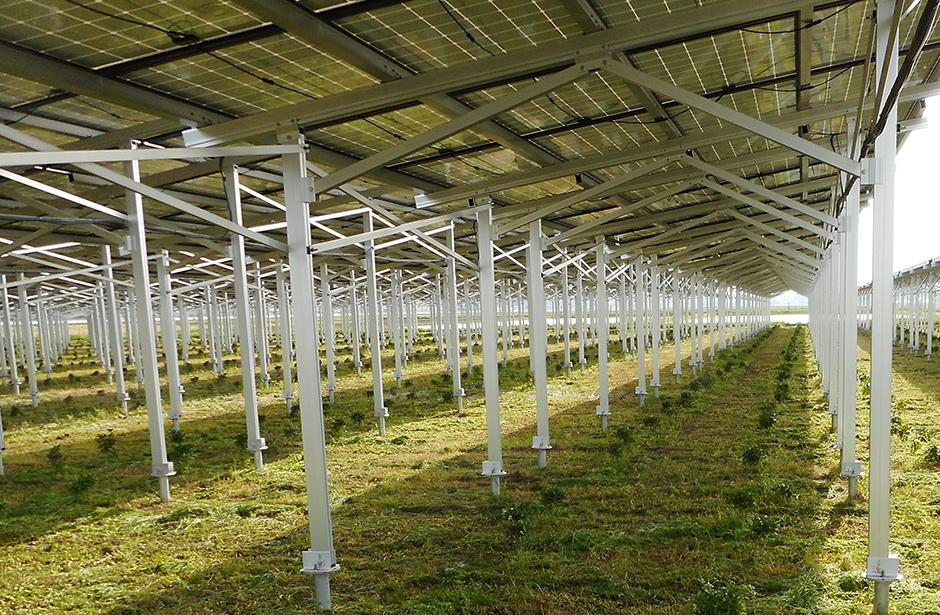 日本全国に太陽光発電事業を展開。社内での管理・運営により、細やかな対応が可能に